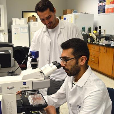 fiu-biomedical-engineering-scholarships