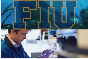 "FIU first South Florida university to be designated ""emerging preeminent state research university"""