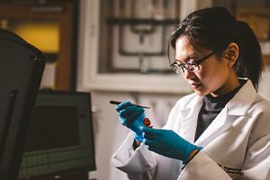 FIU scientist wins prestigious national early career investigator award